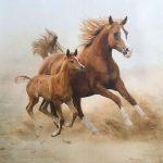 Фактура Иней. Лошадь золотистой масти. Фотообои на заказ, купить фотобои в Николаеве. Фактура Иней. Лошади, пустыня 3д.