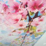 fotopechat_na_natyazhnom _potolke_vetka_sakura_nikolaev
